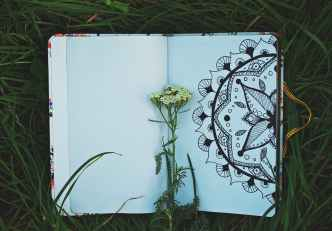 unbloomed white flower bud placed on opened book